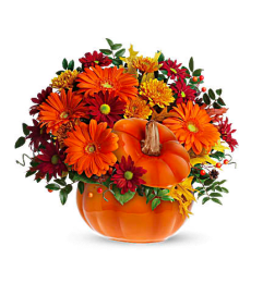 Warm Wishes Pumpkin