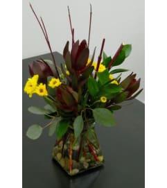 Leuchadendron Vase