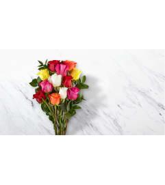 18 Rainbow Rose Wrap - NO VASE