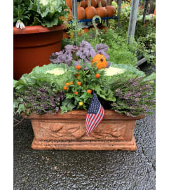 mixed fall planter