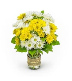 Daisies in a mason jar