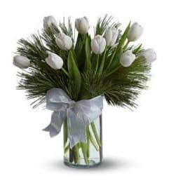 White Tulips and Pine