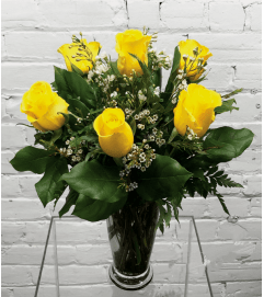 Yellow Roses-1/2 Dozen