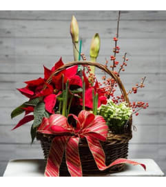 Lush Holiday Planter