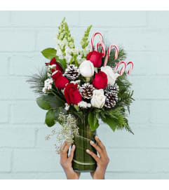 Candy Cane & Roses