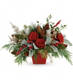Teleflora Winter Blooms Centerpiece