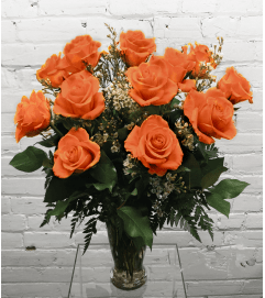 1 Dozen Roses (Peach/Orange)