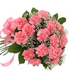 12 Pink Carnations Bouquet 19