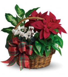 Holiday Homecoming European Basket