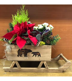 Beary Christmas Sleigh Planter