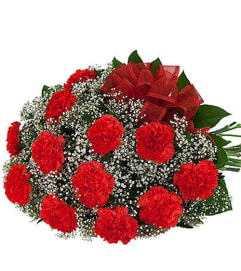 12 Red Carnation 19
