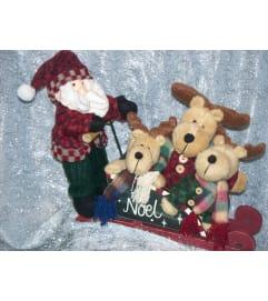 Santas Noel sleigh