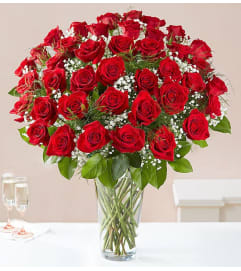 48-Ultimate Elegance™ Long Stem Red Roses