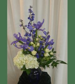 Iris & Hyacinth's