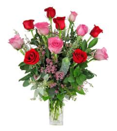 1 Dozen Red/Pink Roses