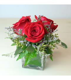3 Red Roses in a Small Cube