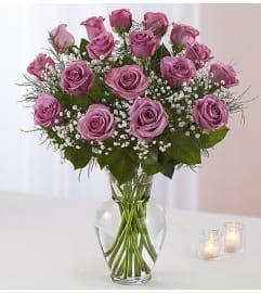 Premium Lavender Roses