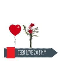 Teen Love 2.0