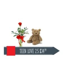 Teen Love 2.5