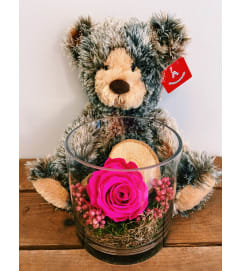 Perfectly Preserved Rose & (Large) Plush Pal Bundle