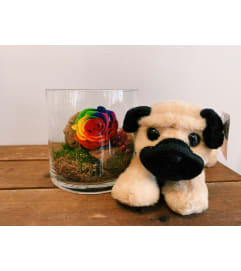 Perfectly Preserved Rose & (Small) Plush Pal Bundle