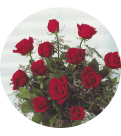 Valentine's Day Red Dozen