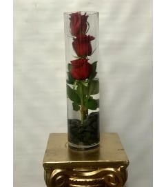 Cylinder Rose Trio