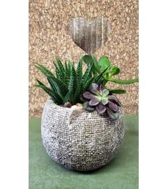 Sweetheart Succulent Bowl