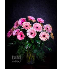 20 pink  gerberas in a vase