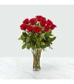 FTD's Dozen Red Roses no BB