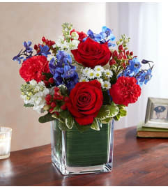 Healing Thoughts- Red, White, and Blue
