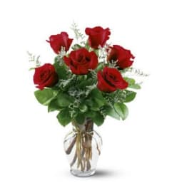 6 RED ROSES ARRANGED IN A VASE