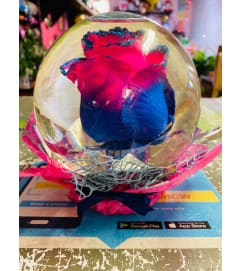 Rose In Glass Globe
