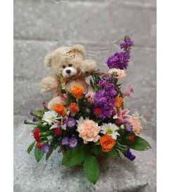 My Beary Valentine