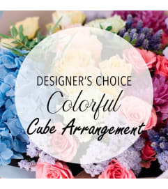 Designer's Choice-Colorful Cube