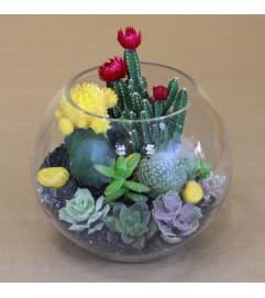 Bowl of Mojave