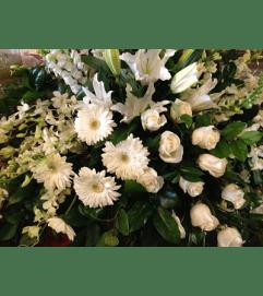 flower arrr