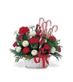 Candy Cane Lane Bouquet