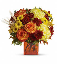 Teleflora's Autumn Expression