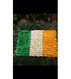 Irish Flag.