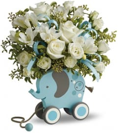 MiGi Baby Elephant by Teleflora - Blue