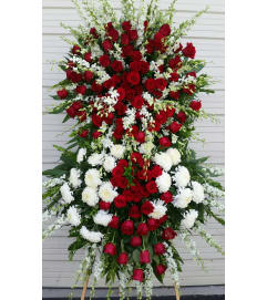 forever Love Red Roses