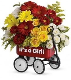 Baby's Wow Wagon by Teleflora -