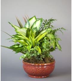 Classic Ceramic Planter