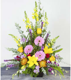 Tropical Color Arrangement