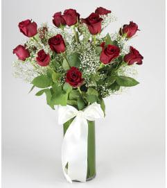 Dressy Rose
