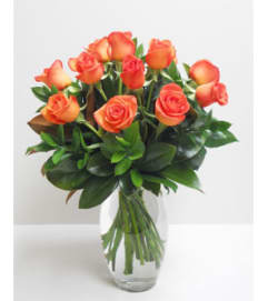 1 Dz. Tangerine Orange roses