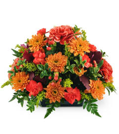 Free Flower Delivery In Sioux Falls The Flower Mill Sioux Falls Florist