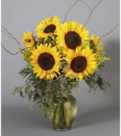 Classic Sunflowers