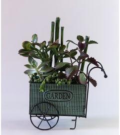 Succulent Garden Cart